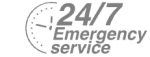 24/7 Emergency Service Pest Control in Barnet, High Barnet, Arkley, EN5. Call Now! 020 8166 9746